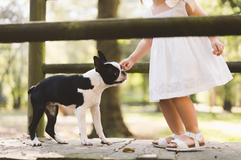 la niña jugando con el perro